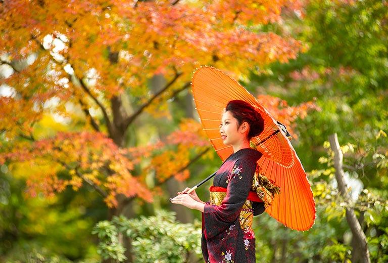 紅葉の下で、振袖を着た女性が傘をさす様子