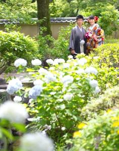 ウェディングフォト紫陽花