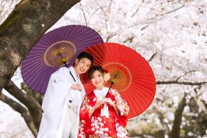 桜ウェディング和装