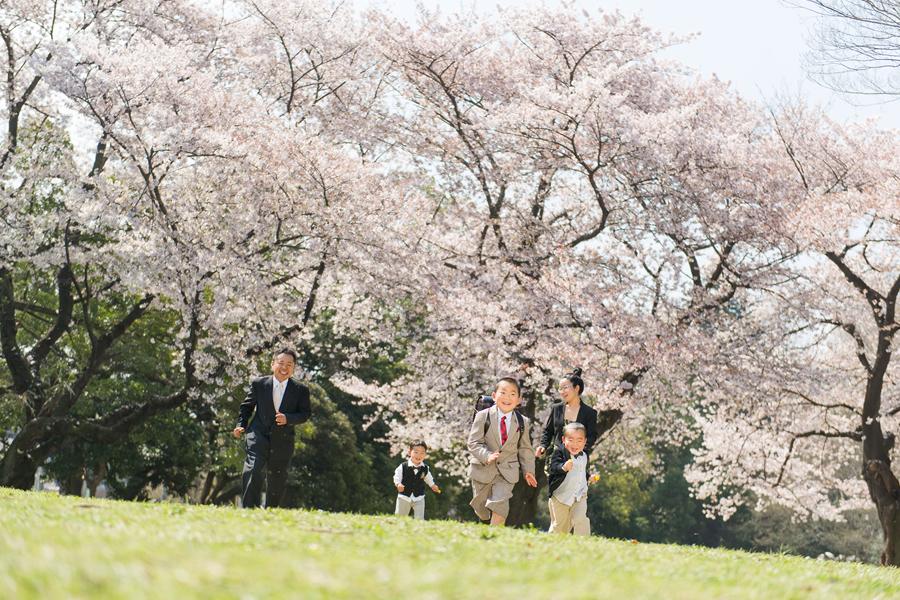 家族で桜ロケ