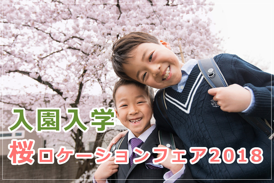 入園入学の桜ロケーション撮影