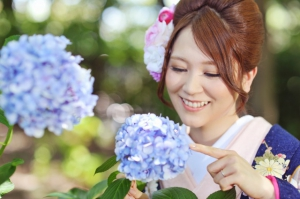 紫陽花、庭園ロケ