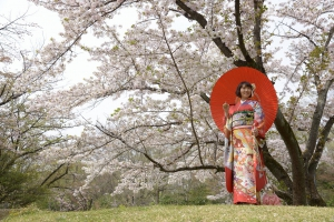 成人式,桜ロケ