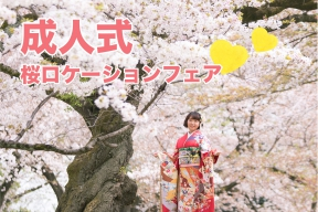 限定30組の「桜ロケーションフェア2018」のご予約受付中(成人式振袖)